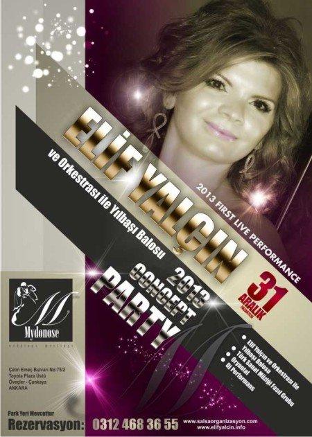 Mydonose 2013 Yılbaşı Programı