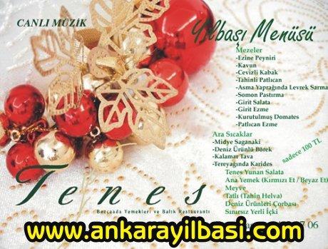 Tenes Restaurant 2011 Yılbaşı Programı